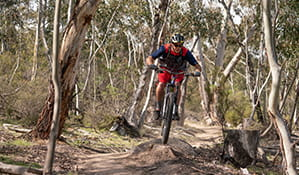 A mountain bike rider jumps over a track feature along a technical section of the lower Thredbo Valley track, Kosciuszko National Park. Photo: Robert Mulally/DPIE