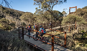 A family of 4 mountain bike riders approach Bridge 1 along Thredbo Valley track in Kosciuszko National Park. Photo: Robert Mulally/DPIE