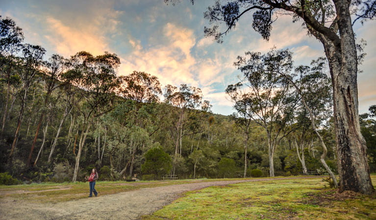 Jounama Creek campground, Kosciuszko National Park. Photo: Murray van der Veer
