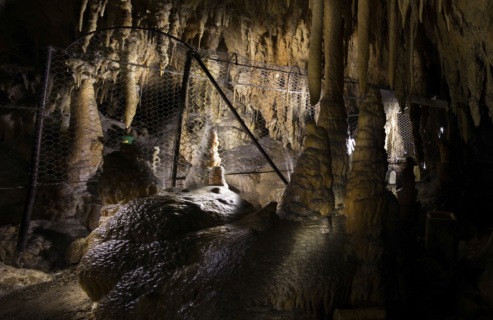 Harrie Wood Cave, Yarrangobilly Caves, Kosciuszko National Park. Photo: Murray Vanderveer