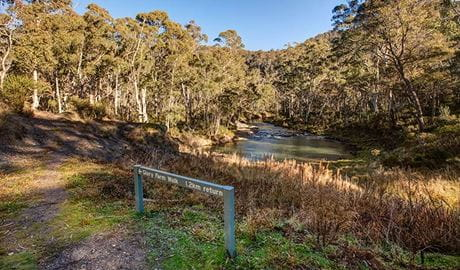 Glory Farm walk beside the Yarrangobilly River, Kosciuszko National Park. Photo: Murray Vanderveer