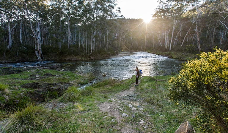Yarrangobilly River walk, Kosciuszko National Park. Photo: Murray Vanderveer