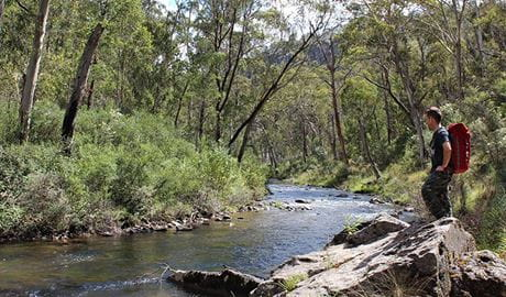 Yarrangobilly River walk, Kosciuszko National Park. Photo: Clint and Todd Wright