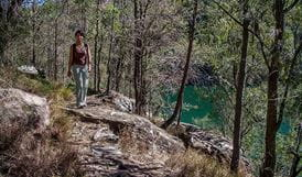 A person walking along the track, Mount-Ku-ring-gai track to Berowra, Ku-ring-gai Chase National Park. Photo:ANdy Richards Copyright:NSW Government