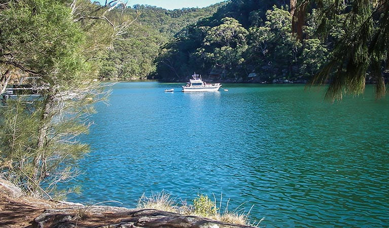 A boat on the river, Mount Ku-ring-gai track to Berowra, Ku-ring-gai Chase National Park. Photo:Andy Richards Copyright:NSW Government