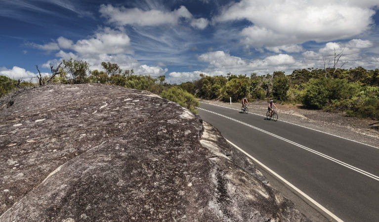 Two cyclists riding along West Head Road in Ku-ring-gai Chase National Park. Photo: David Finnegan/OEH