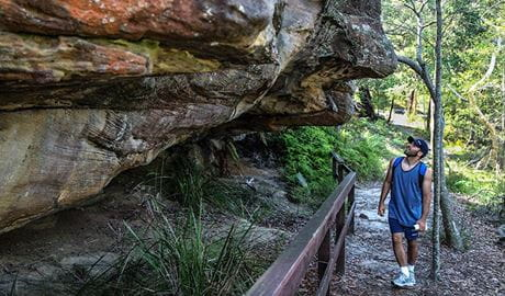Aboriginal heritage walk, Ku-ring-gai Chase National Park. Photo: Andrew Richards/OEH