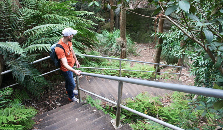Stairs along the Aboriginal heritage walk, Ku-ring-gai Chase National Park. Photo: Natasha Webb /OEH