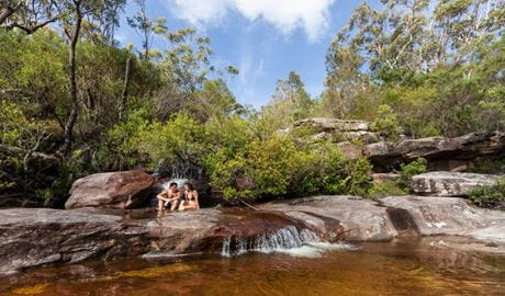 America Bay track, Ku-ring-gai Chase National Park. Photo: NSW Government