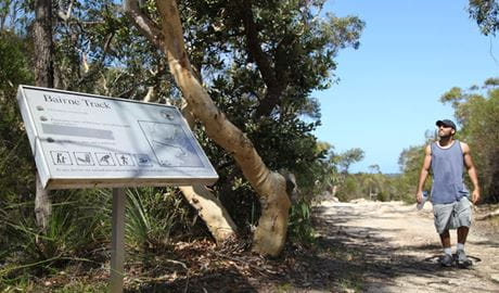Bairne track, Ku-ring-gai Chase National Park. Photo: Andrew Richards/NSW Government