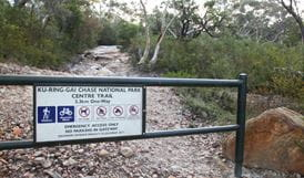 Centre trail, Ku-ring-gai Chase National Park. Photo: Andy Richards/NSW Government