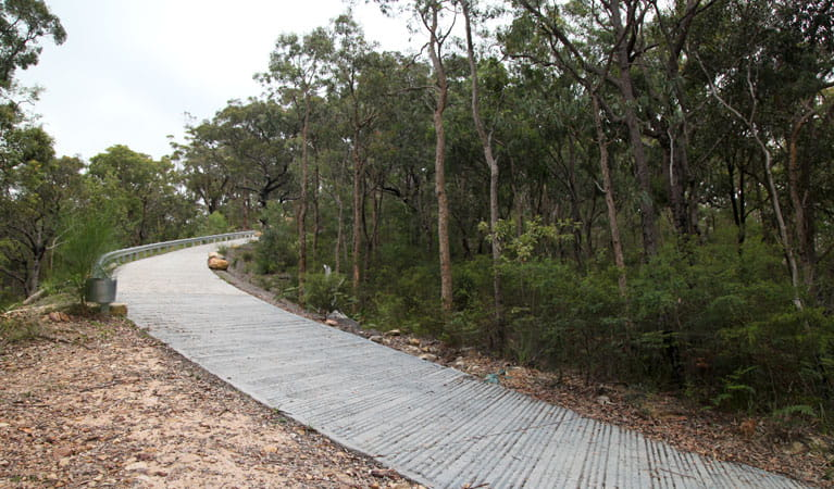 Jerusalem Bay to Brooklyn Track, Ku-ring-gai Chase National Park. Photo: Andy Richards