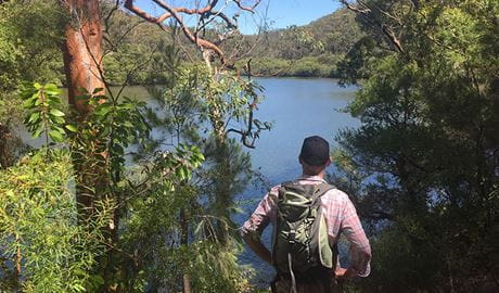 Views of Cowan Creek from the Sphinx Memorial to Bobbin Head loop track, Ku-ring-gai Chase National Park. Photo: Natasha Webb/OEH