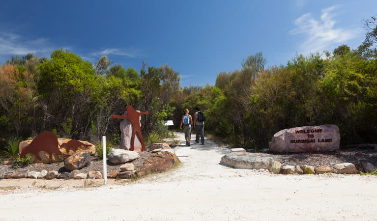Two people walking through The Basin Aboriginal art site in Ku-ring-gai Chase National Park. Photo: David Finnegan/OEH