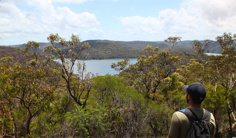 Wallaroo track, Ku-ring-gai Chase National Park. Photo: Andy Richards/NSW Government