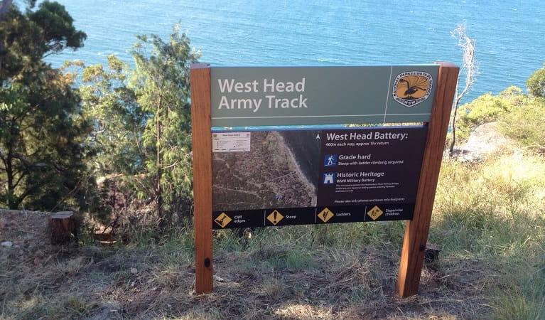 West Head army track, West Head lookout, Ku-ring-gai Chase National Park. Photo: Natasha Funke/OEH