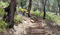 NPWS rangers on West Head army track steps. Photo: Lee de Gail/NPWS