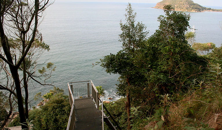 The top of the ladders that are part of West Head Army track. Photo: Natasha Webb/NPWS