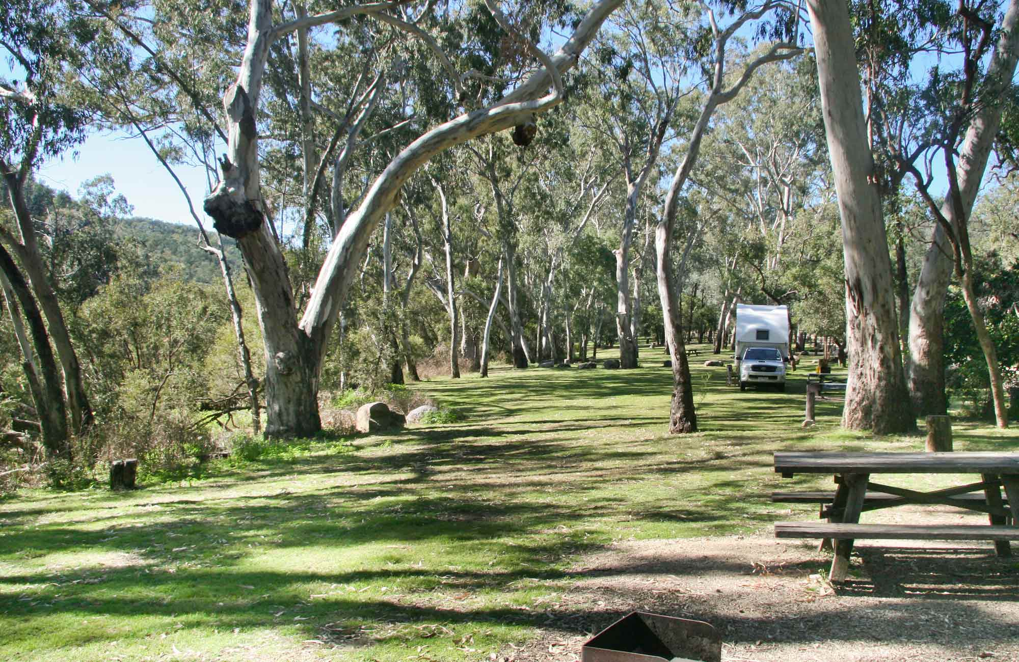 Lemon Tree campground, Kwiambal National Park. Photo: NSW Government