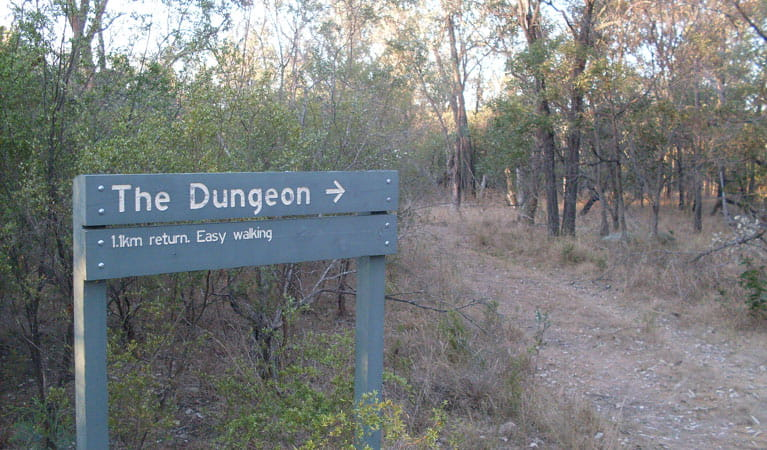 Dungeon lookout, Kwiambal National Park. Photo: NSW Government