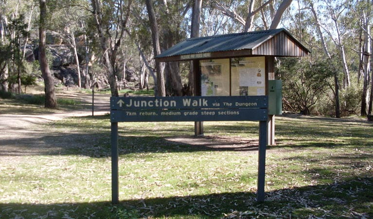 Junction walk, Kwiambal National Park. Photo: NSW Government