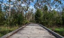 Googik Heritage walking track, Lake Innes Nature Reserve. Photo: John Spencer