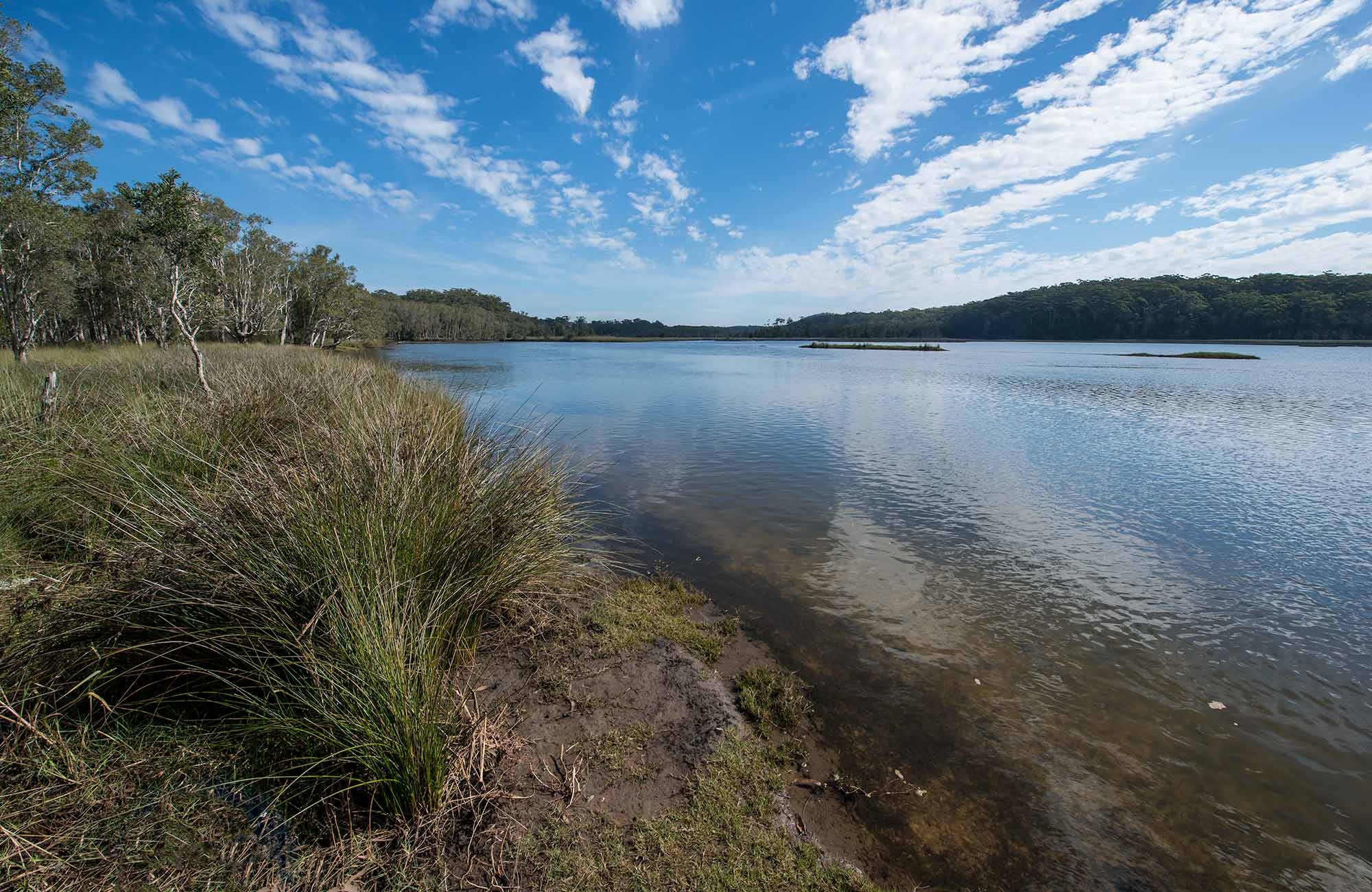 Lake Innes Nature Reserve. Photo: John Spencer