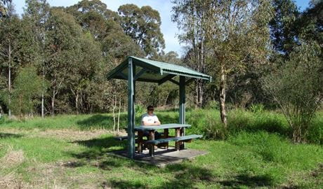 Alexanders picnic area, Lake Macquarie State Conservation Area. Photo: Susan Davis/NSW Government