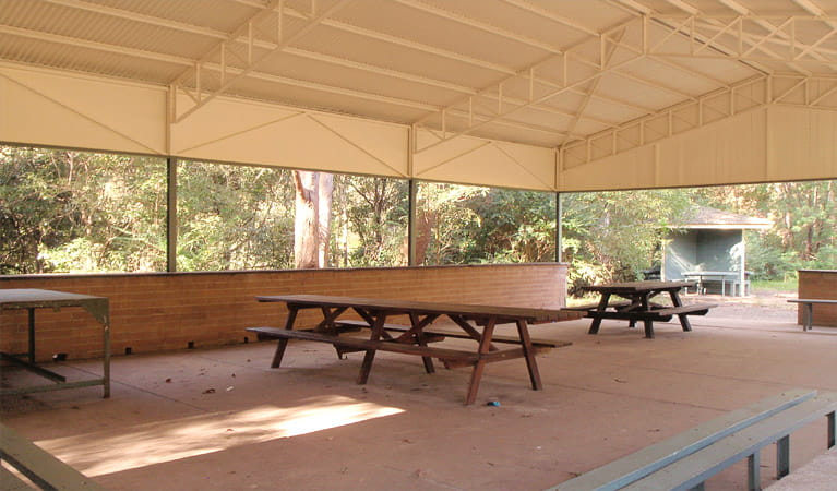 Commandment Rock picnic area, Lane Cove National Park. Photo: Debby McGerty
