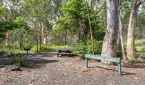 Halfway Point picnic area, Lane Cove National Park. Photo: John Spencer