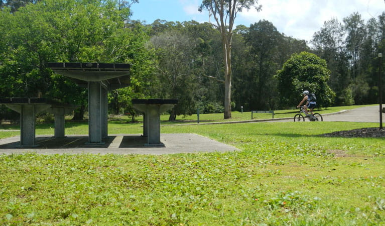 Jenkins Hill picnic area, Lane Cove National Park. Photo: Debby McGerty