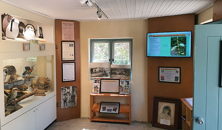The eastern interior of Jenkins Kitchen with photographs and animals on display in Lane Cove National Park. Photo: Ryan Siddons © DPIE