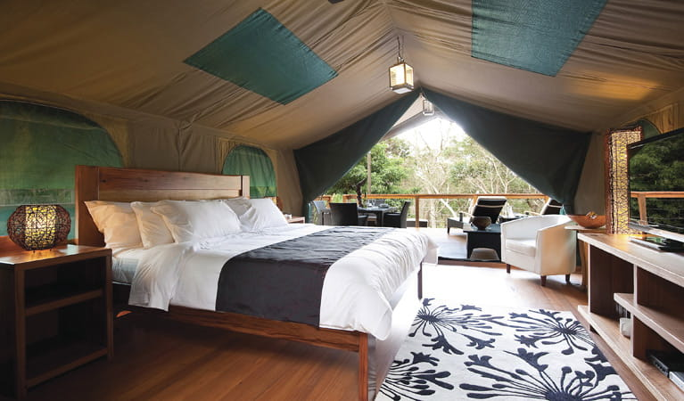Inside the luxury tent at Lane Cove Holiday Park - Tandara. Photo: OEH