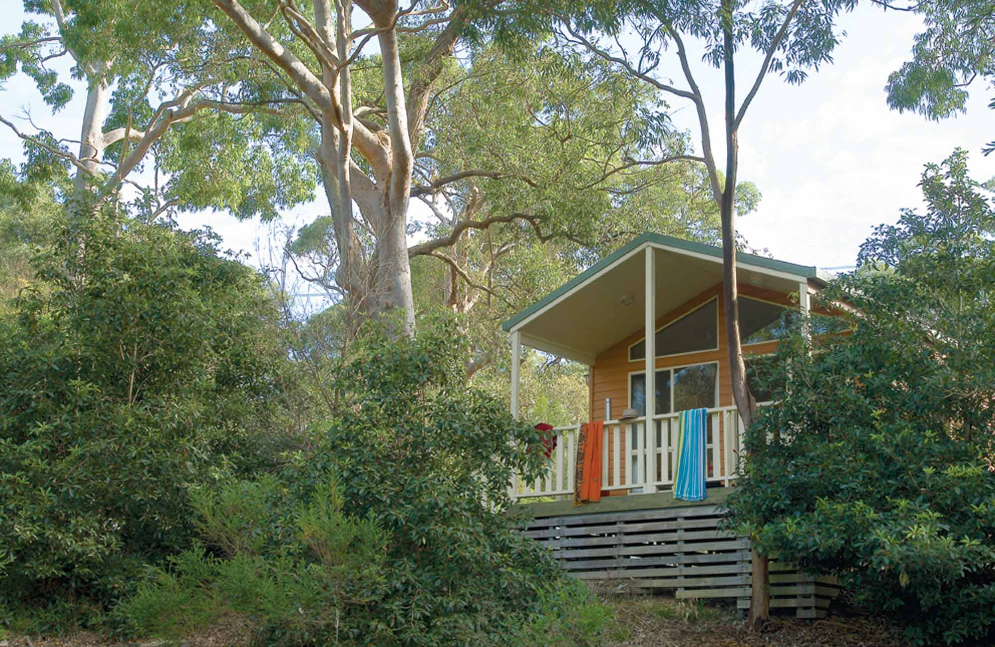 A cabin surrounded by bushland at Lane Cove Holiday Park – cabins, in Lane Cove National Park. Photo: Michael van Ewijk/NSW Government
