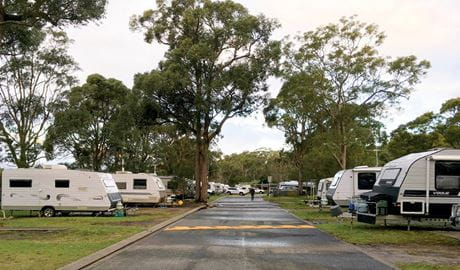 Caravans parked on either side of the road at Lane Cove Holiday Park - caravan park, in Lane Cove National Park. Photo: Claire Franklin/OEH