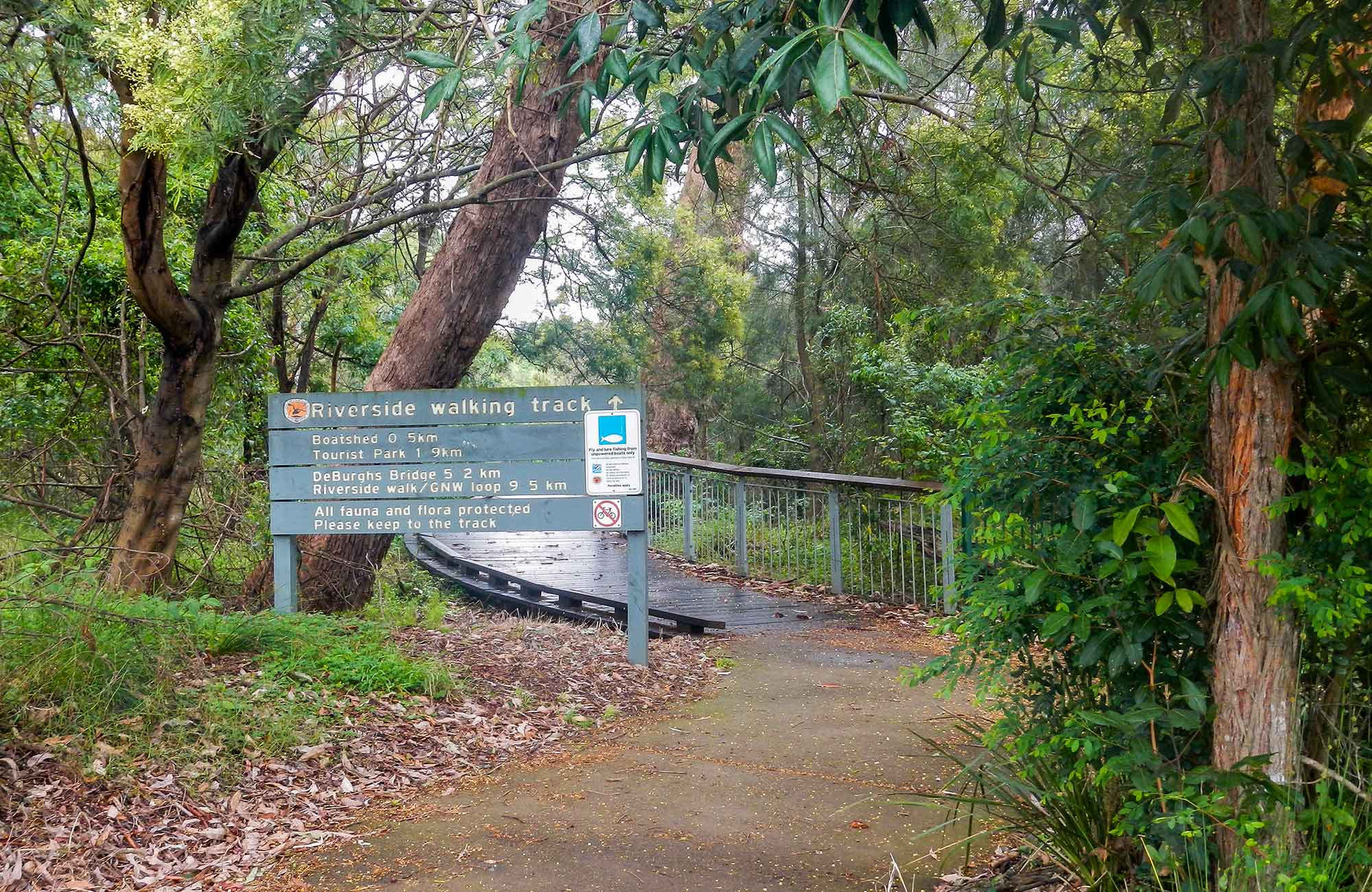Riverside walking track, Lane Cove National Park. Photo: Debbie McGerty