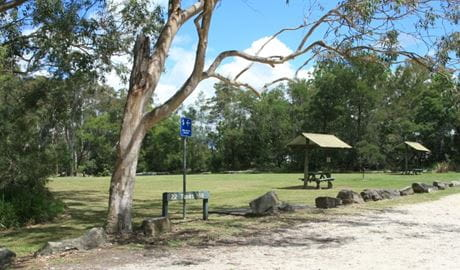 Tunks Hill picnic area, Lane Cove National Park. Photo: OEH