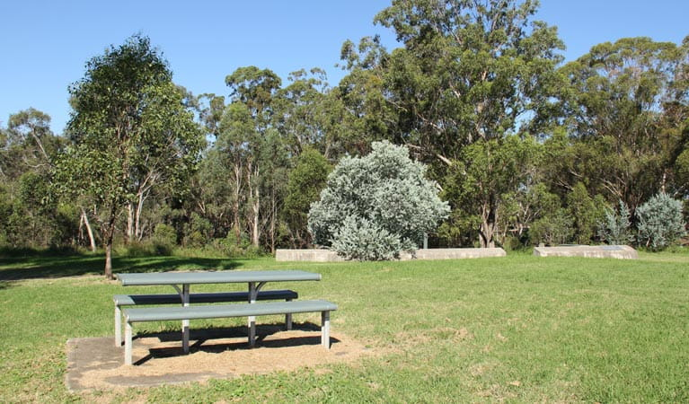 Picnic area, Leacock Regional Park. Photo: John Yurasek