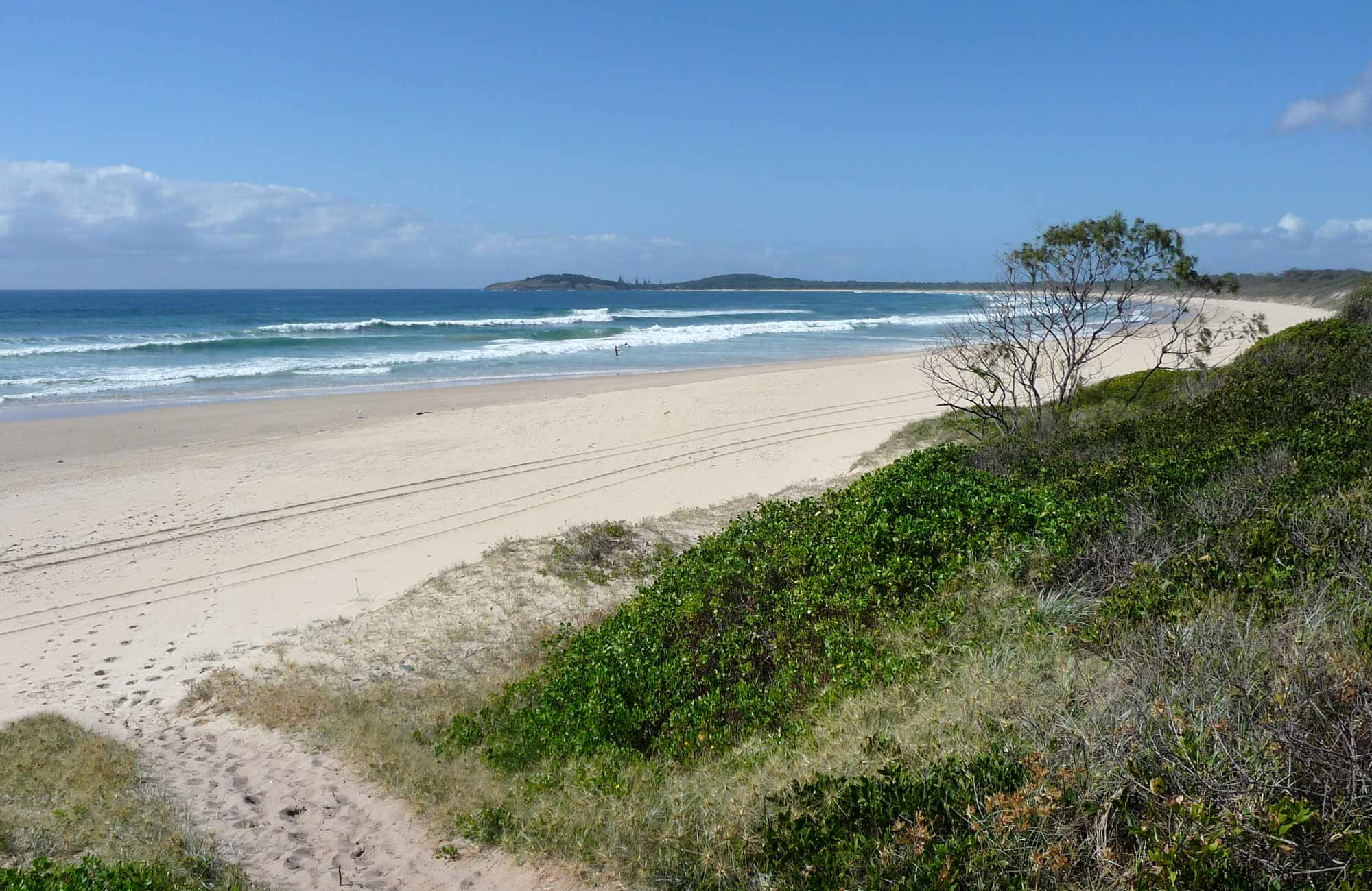 Point Plomer campground, Limeburners Creek National Park. Photo: Barbara Webster/NSW Government