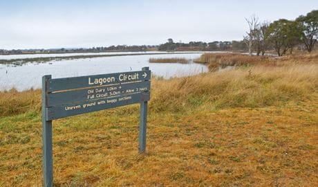 Lagoon Circuit walking track, Little Llangothlin Nature Reserve. Photo: Rob Cleary