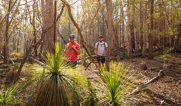 Two men walk through woodland past grass trees in Livingstone National Park. Photo: Robert Mulally/DPIE