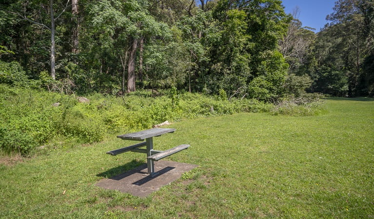 Picnic table at Cascades picnic area, Macquarie Pass National Park. Photo: John Spencer ©DPIE