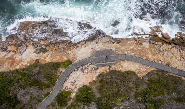 Grasses, cliffs and coastline in Malabar Headland National Park.Photo: Chad Weston/OEH