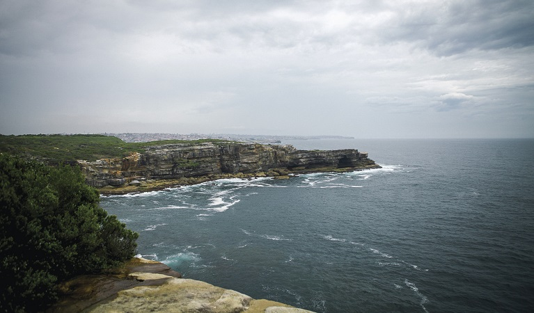 Dramatic sandstone cliffs, Malabar Headland National Park. Photo: Chad Weston/OEH