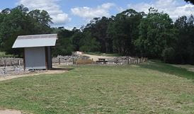 Mann River campground and picnic area with toilet facilities, Mann River Nature Reserve. Photo: OEH/Nerida Holznagel