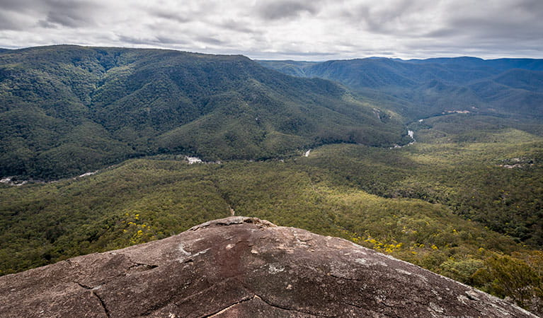 Tommys Rock lookout and walking track, Mann River Nature Reserve. Photo: John Spencer