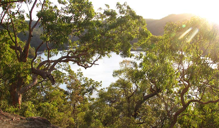 Sunrise view through angophora trees to Berowra Creek, from Coba Ridge to Collingridge Point walking track, Marramarra National Park. Photo: Tegan Burton/OEH