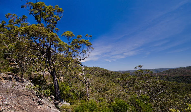 Marramarra National Park. Photo: John Spencer/NSW Government