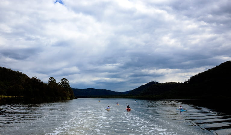 A group of kayakers on the Hawkesbury River on a cloudy day. Photo: Rosie Nicolai/DPIE.