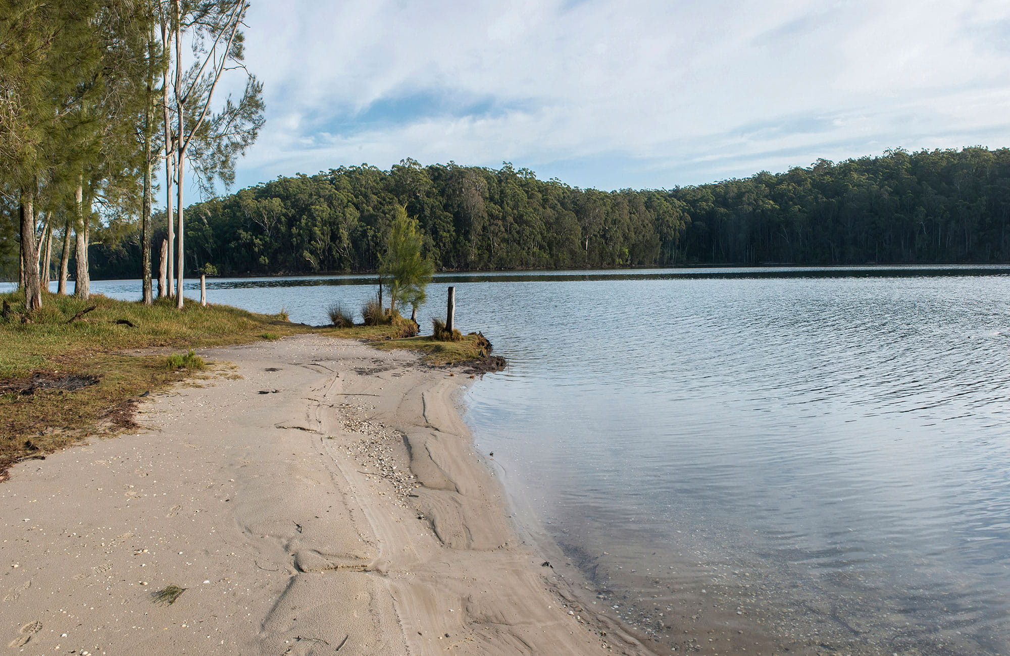 View across Burrill Lake, Meroo National Park. Photo: Michael Van Ewijk/OEH